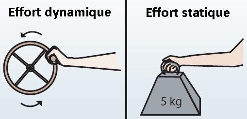 efforts dynamiques et statiques ergonomie